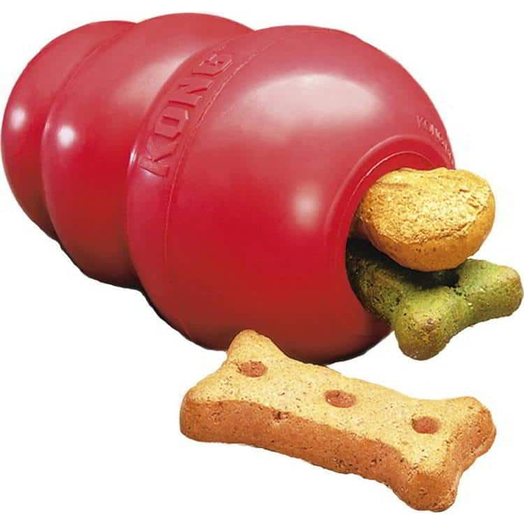 A kong toy with treats in it